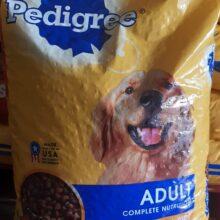 Pedigree Dog Food 50 lbs