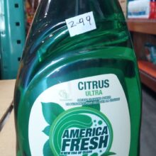 America Fresh Dish Washing Liquid